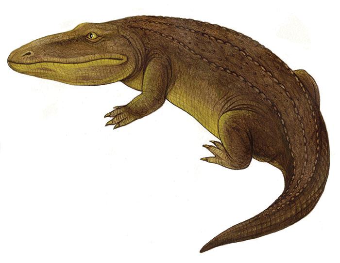 Ветлугозавр